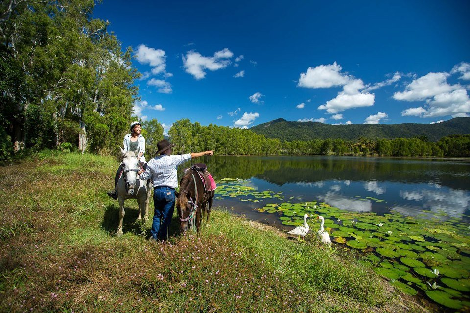 Experience Cairns through Horseback Riding