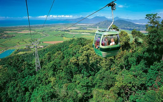 Explore the Rainforest through the Skyrail