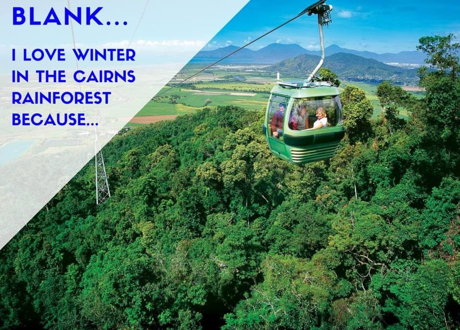Experience Skyrail in Cairns